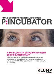 utveckling_klump_tjanster_pincubator